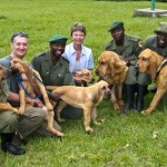 Bloodhound Puppies' First Week in Congo.