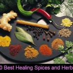 10 Best Healing Spices